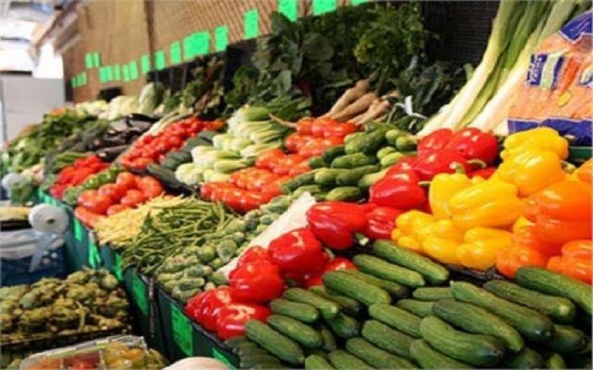 «الزراعة» تعلن ارتفاع صادرات مصر لأكثر من 3.7 مليون طن