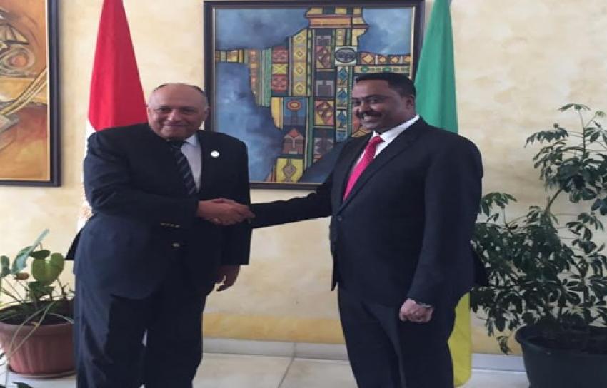 وزير الخارجية يلتقى نظيره الأثيوبى بأديس أبابا