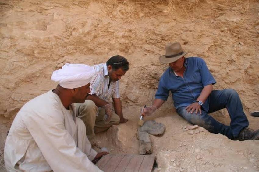 حواس: أول بعثة مصرية متكاملة تعمل الآن بالوادي الغربي