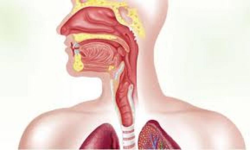 سرطان المرئ اسبابه و علاجه