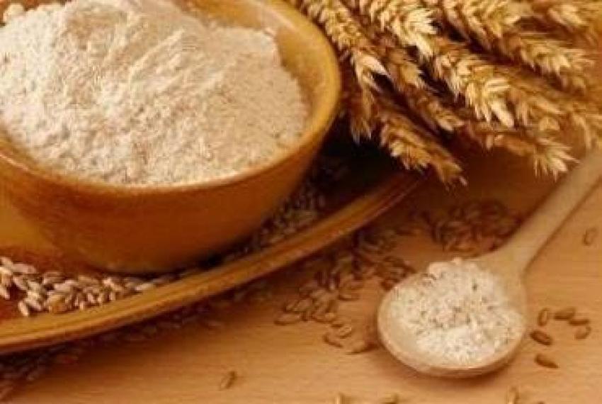 جنين القمح كنز غذائي للصحة