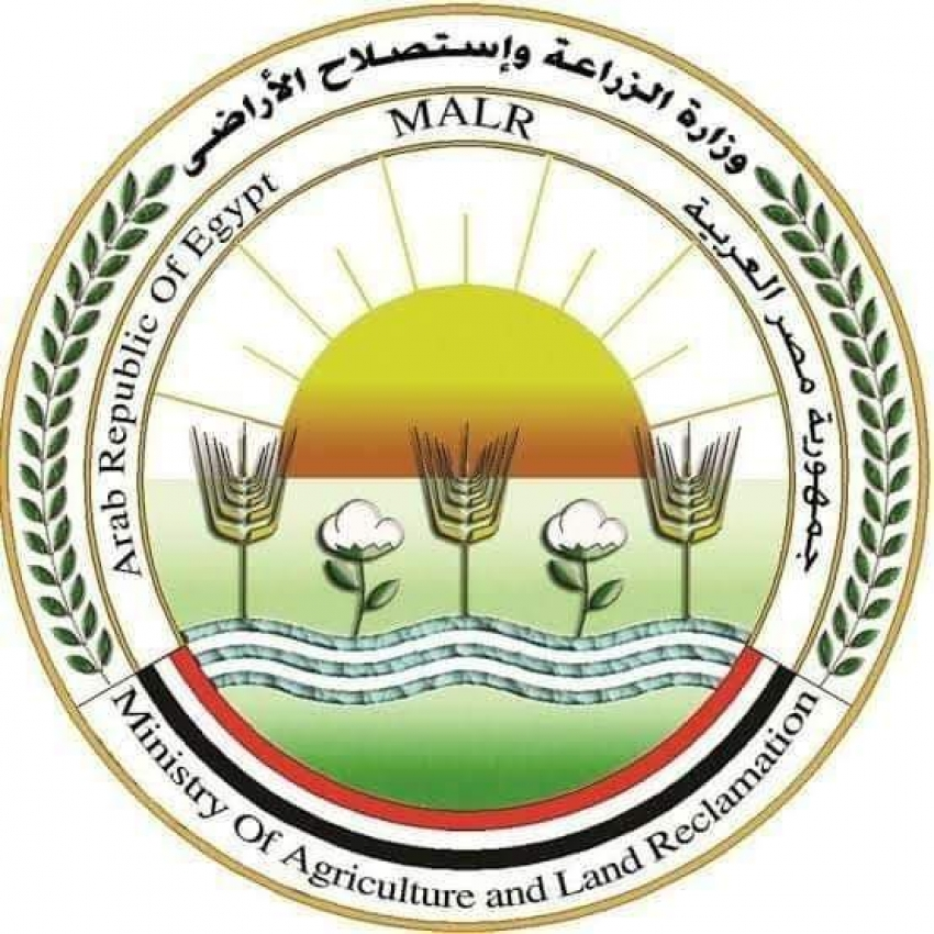 الزراعة : ارتفاع صادرات مصر الزراعية لـ أكثر من 3.6 مليون طن  والموالح في المركز الأول