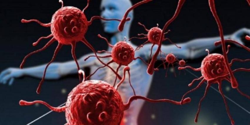 تسبب الإصابة بالسكر.. اكتشاف خلايا غامضة خطيرة في جسم الإنسان