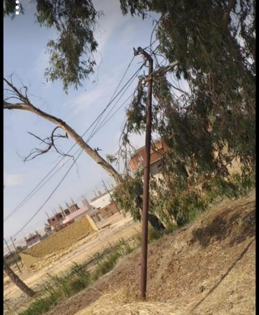 حزب مستقبل وطن بالسويس يحل مشكلة سقوط أعمدة كهربائية داخل الأراضى الزراعية بقرية جنيفة بالجناين