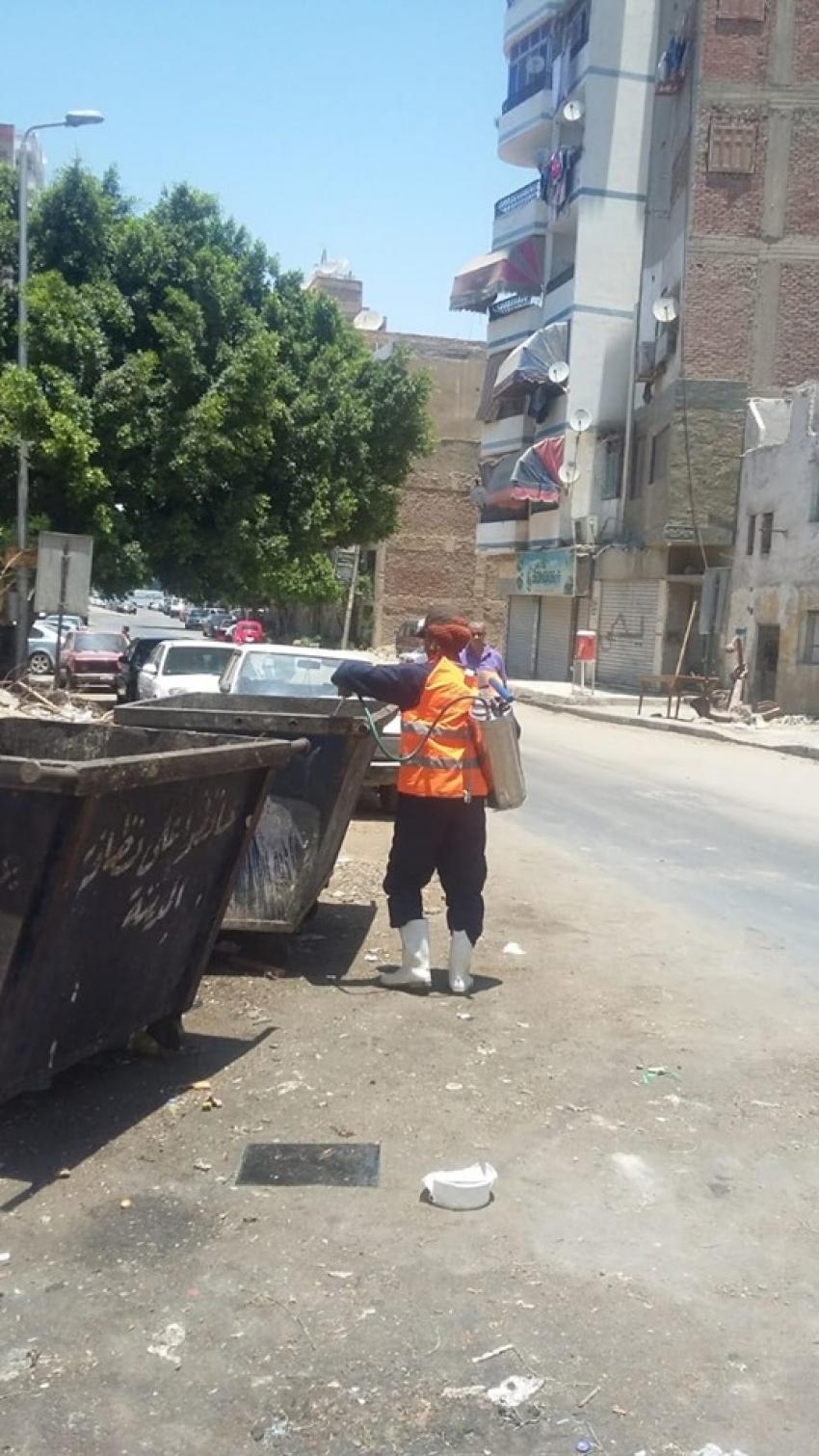 استمرار حملات مكافحة البعوض بأحياء السويس